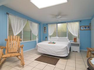 Nice Haleiwa Studio rental with Internet Access - Haleiwa vacation rentals