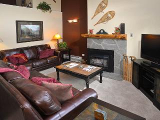 Enjoy this 3 bedroom vacation condo only 150 yards to the Gondola Ski Lift in Lionshead Village. - Vail vacation rentals