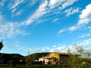 Gorgeous Chianti Vineyards, Private Home, Views! - Siena vacation rentals