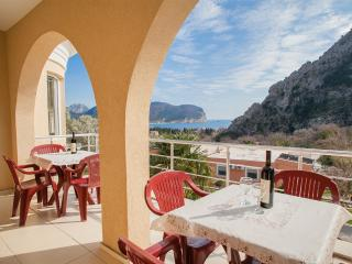 Apartments Jovicevic-Two Bedroom Ap with Balcony 2 - Petrovac vacation rentals