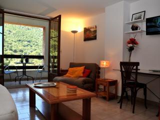 Nice Condo with Garden and Short Breaks Allowed - Porto vacation rentals