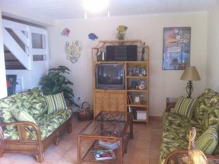 Key Largo Bayside Townhouse - Fish, Dive, or Relax - Key Largo vacation rentals
