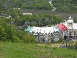 2 bedroom Condo with Internet Access in Mont Tremblant - Mont Tremblant vacation rentals