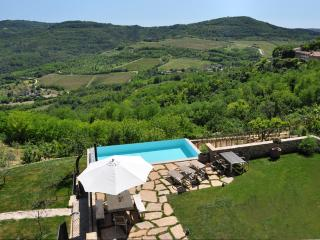 Ana`s house, in the ancient Motovun - Motovun vacation rentals