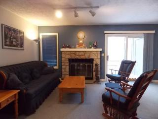 Two Bedroom/1.5 Bath at Jack Frost Golf & Ski!! - Blakeslee vacation rentals