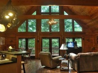 Skyfall Lodge, the ultimate game room, hot tub too - Jasper vacation rentals