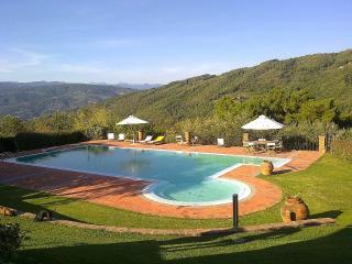 Villa Di Pietra - Monsummano Terme vacation rentals