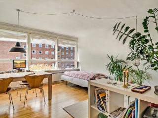 Welcoming Copenhagen apartment near Groendal st - Copenhagen vacation rentals