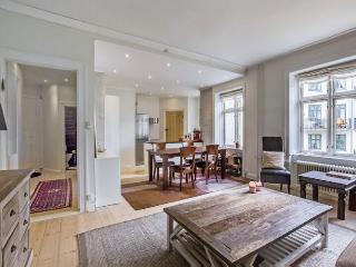 Nice Copenhagen apartment close to Nordhavn - Copenhagen vacation rentals