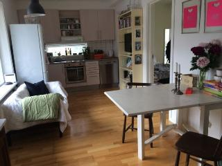 Nice Copenhagen apartment near Peter Bangs Vej st - Copenhagen vacation rentals