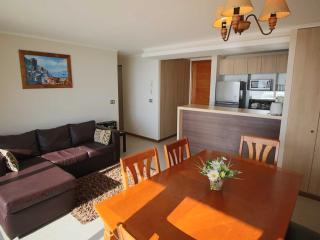 2 bedrooms apartment with ocean view 4rd floor - La Serena vacation rentals