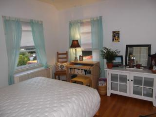Guest Nest-Guest Room, Private Bath, WiFi, Parking - Washington DC vacation rentals