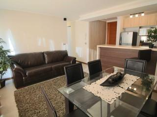 2 bedrooms apartment with sea view 3rd floor - La Serena vacation rentals