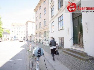 Charming Condo with Dishwasher and Central Heating - Copenhagen vacation rentals