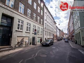 Large Apartment In The Center of Copenhagen - 102 - Copenhagen vacation rentals