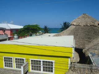 hotel ocean paradise - San Pedro vacation rentals