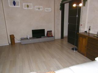 Nice 1 bedroom Condo in Milan with Internet Access - Milan vacation rentals