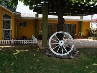 3 br in Beautiful New Kingston Villa - Kingston vacation rentals