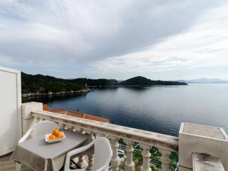 Sea front apartment in Sobra - Sobra vacation rentals