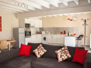 Le Petit Moulin de Veillard - Ellipse - Bourg-Charente vacation rentals