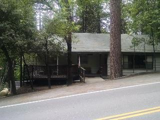 Great home- near downtown & lake, handicapped accessible, pets ok, internet - Twain Harte vacation rentals
