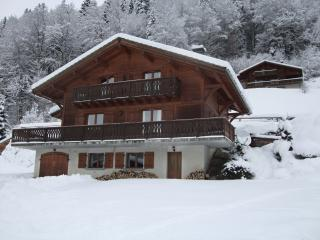 Mountain Voyages Chalet - Montriond vacation rentals