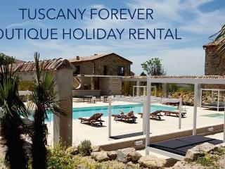Tuscany Forever VOLTERRA Villa VI  FIRST FLOOR - Saline di Volterra vacation rentals