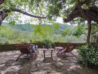 Charming flat in a traditional stone house - Paciano vacation rentals