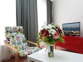 Central, Easy access in Sultanahmet - Istanbul vacation rentals