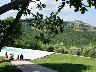 Romantic 1 bedroom Apartment in Ciciano - Ciciano vacation rentals