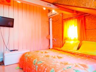 Orange flower 4 - top center of Sofia - Sofia vacation rentals