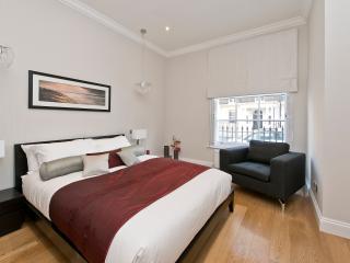 Mayfair 2 bed 2 bath modern flat - London vacation rentals