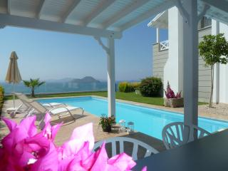 Dream house with great sea view and private pool - Kadikalesi vacation rentals