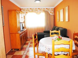2 bedroom Condo with Internet Access in Icod de los Vinos - Icod de los Vinos vacation rentals