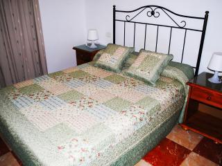Comfortable Condo with Internet Access and Television - Icod de los Vinos vacation rentals
