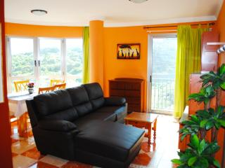 Comfortable 2 bedroom Apartment in Icod de los Vinos with Internet Access - Icod de los Vinos vacation rentals