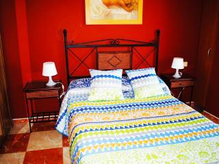 Apartments Drago 01 - Icod de los Vinos vacation rentals
