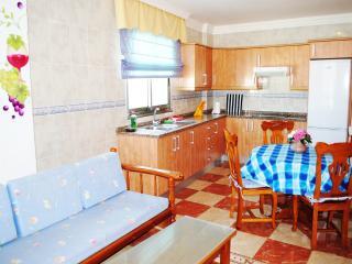 Nice 1 bedroom Condo in Icod de los Vinos - Icod de los Vinos vacation rentals