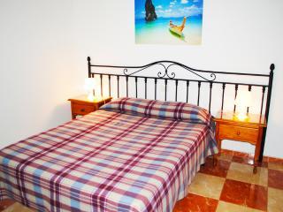 Apartments Drago 15 - Icod de los Vinos vacation rentals
