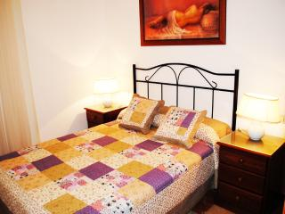 Apartments Drago 20 - Icod de los Vinos vacation rentals