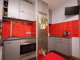 Sunny studio apartment - Kaunas vacation rentals