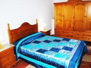 Apartments Drago 8 - Icod de los Vinos vacation rentals