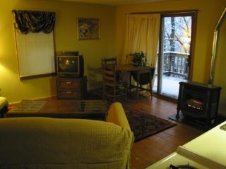 Adorable 1 bedroom Northfield Cottage with Deck - Northfield vacation rentals