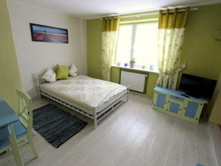 Charming Lodz Studio rental with Internet Access - Lodz vacation rentals