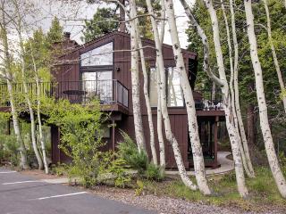 Lakeside condo with resort amenities, close to ski - Tahoe City vacation rentals