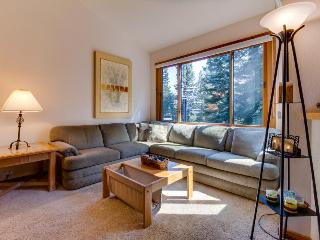 Dog-friendly condo with shared hot tub, pool, ski-in/ski-out! - Truckee vacation rentals