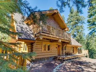 Woodsy, modern lodge with fireplace, close to attractions! - Homewood vacation rentals