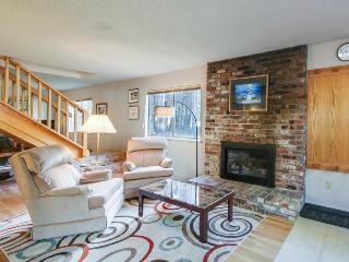 Family/pet-friendly home near hiking and golf - South Lake Tahoe vacation rentals