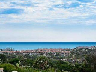 Dana Point Ocean View Splendor - Dana Point vacation rentals