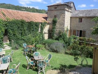 domaine d'alcapies (cave roquefort/ viaduc millau) - Saint Jean d'Alcapies vacation rentals